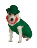 Leprechaun Pet Costume buy now