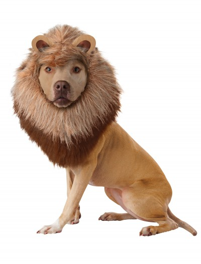 Lion Pet Costume buy now
