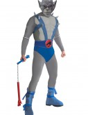 Mens Panthro Costume buy now