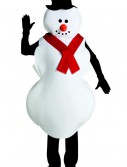 Mr. Snowman Costume buy now