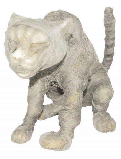 Mummy Cat Prop buy now