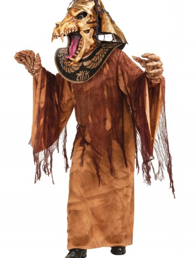 Mummy Warrior Costume buy now