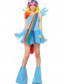 My Little Pony Rainbow Dash Adult Costume buy now