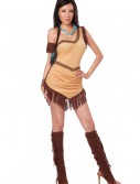 Native American Beauty Costume buy now