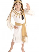 Native American Girl Costume buy now
