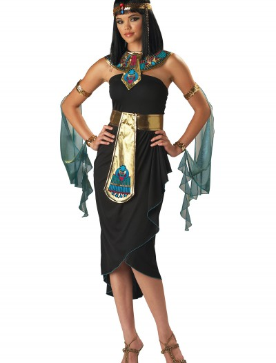 Nile Queen Cleopatra Costume buy now