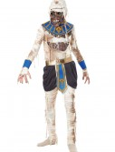 Child's Pharaoh's Revenge Costume buy now