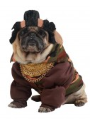 Pity the Fool Dog Costume buy now