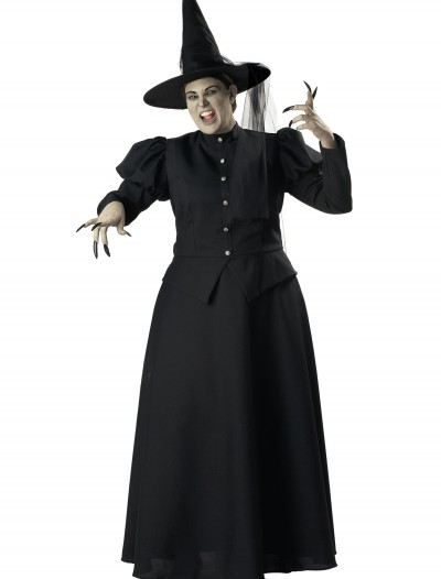 Plus Size Black Witch Costume buy now