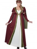 Plus Size Medieval Maiden Costume buy now