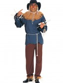 Plus Size Scarecrow Costume buy now