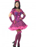 Plus Size Sexy Wonderland Cat Costume buy now