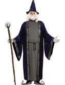 Plus Size Wizard Costume buy now