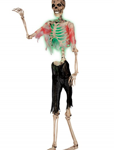 Posable Zombie Skeleton buy now