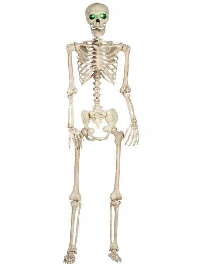 Pose-N-Stay Light Up Skeleton buy now