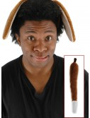 Puppy Dog Ears and Tail buy now