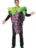Purple Grapes Adult Costume buy now