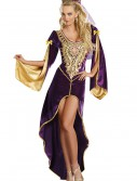 Queen of Thrones Renaissance Costume buy now