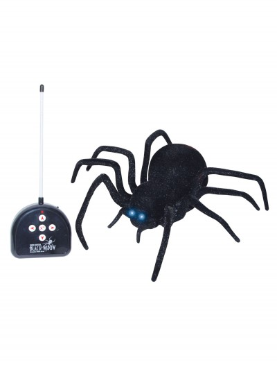 Remote Control Spider buy now