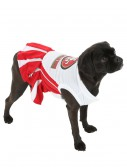 San Francisco 49ers Cheerleader Dog Costume buy now