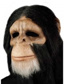 Scary Chimpanzee Mask buy now