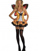 Sexy Adult Butterfly Costume buy now
