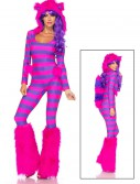 Sexy Cheshire Cat Costume buy now
