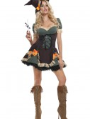 Sexy Exclusive Scarecrow Costume buy now