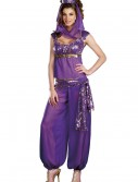 Sexy Purple Genie Costume buy now