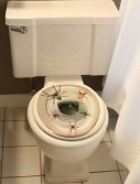 Spider Toilet Topper buy now