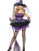 Spider Witch Costume buy now