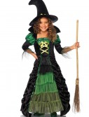 Storybook Witch Child Costume buy now