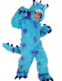 Sullivan the Monster Costume buy now