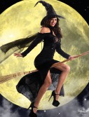 Sultry Sorceress Costume buy now