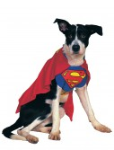 Superman Dog Costume buy now
