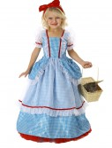 Child Wizard of Oz Dorothy Pocket Princess Costume buy now