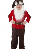 Toddler Dwarf Costume buy now