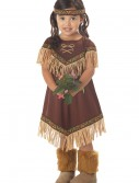 Toddler Li'l Indian Princess Costume buy now