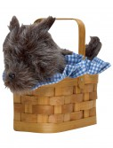 Black Dog Handbag Basket buy now