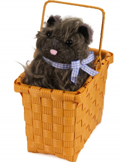 Toto in the Basket buy now