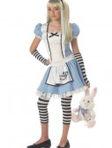 Tween Alice Costume buy now