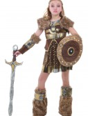 Tween Hildagaard Viking Costume buy now