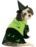Wicked Witch of the West Pet Costume buy now