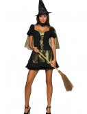 Wicked Witch of the West Sexy Costume buy now