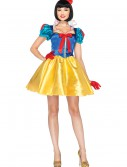 Womens Disney Classic Snow White Costume buy now