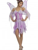 Women's Fairy Costume buy now