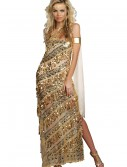 Women's Golden Goddess Costume buy now