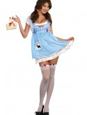 Women's Heel Clickin' Kansas Girl Costume buy now
