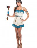 Women's Native Princess Costume buy now