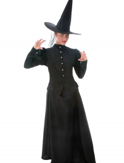 Women's Plus Size Witch Costume buy now